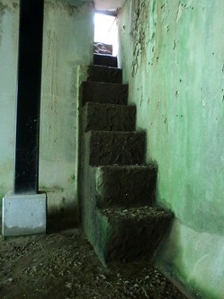 この階段を上る.jpg