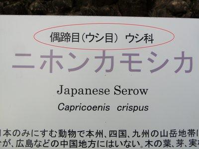 看板③ - コピー.JPG