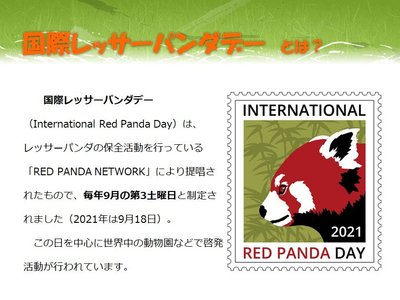 red panda day2021-1.jpg