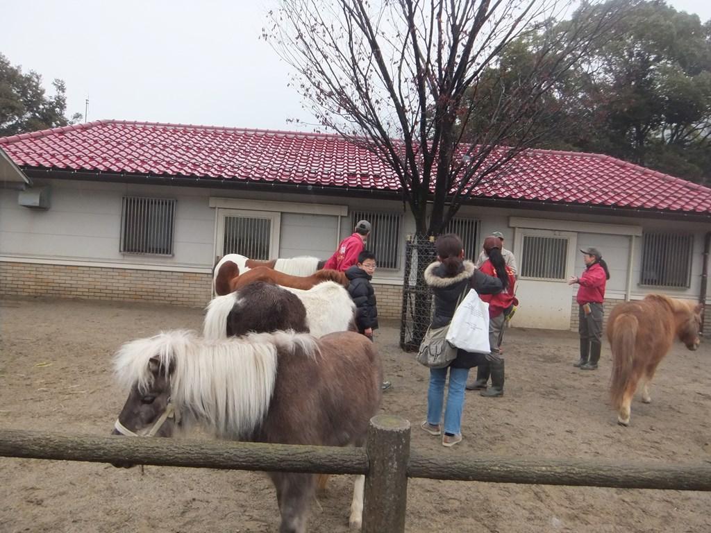 http://www.asazoo.jp/animal/blog/s-DSCF0481.jpg