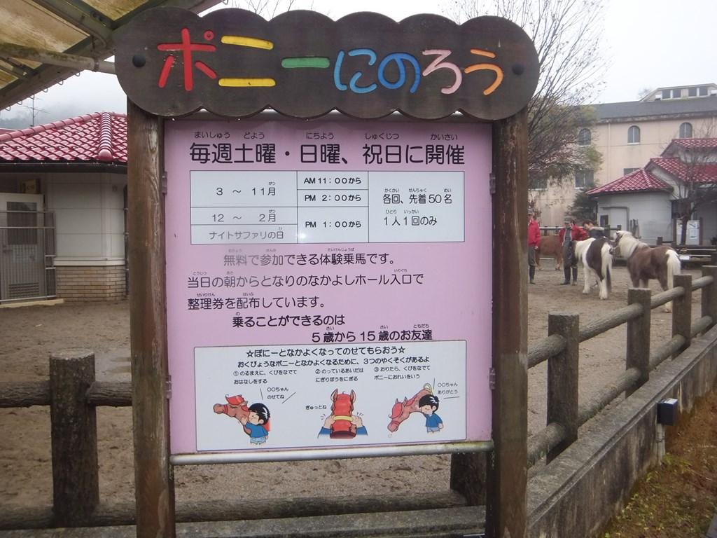 http://www.asazoo.jp/animal/blog/s-DSCF0483.jpg