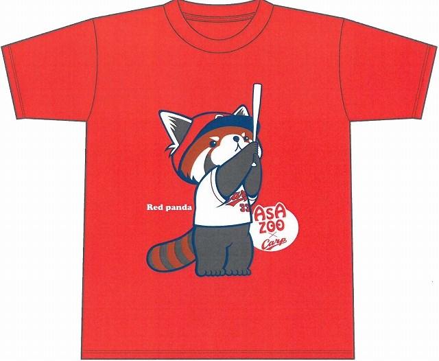 http://www.asazoo.jp/animal/blog/s-s-%E3%83%AC%E3%83%83%E3%82%B5%E3%83%BC%E3%83%91%E3%83%B3%E3%83%80%E3%80%80%E6%96%B0.jpg