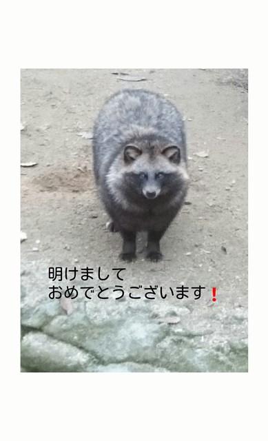 http://www.asazoo.jp/animal/blog/s-sketch-1515044185505.jpg