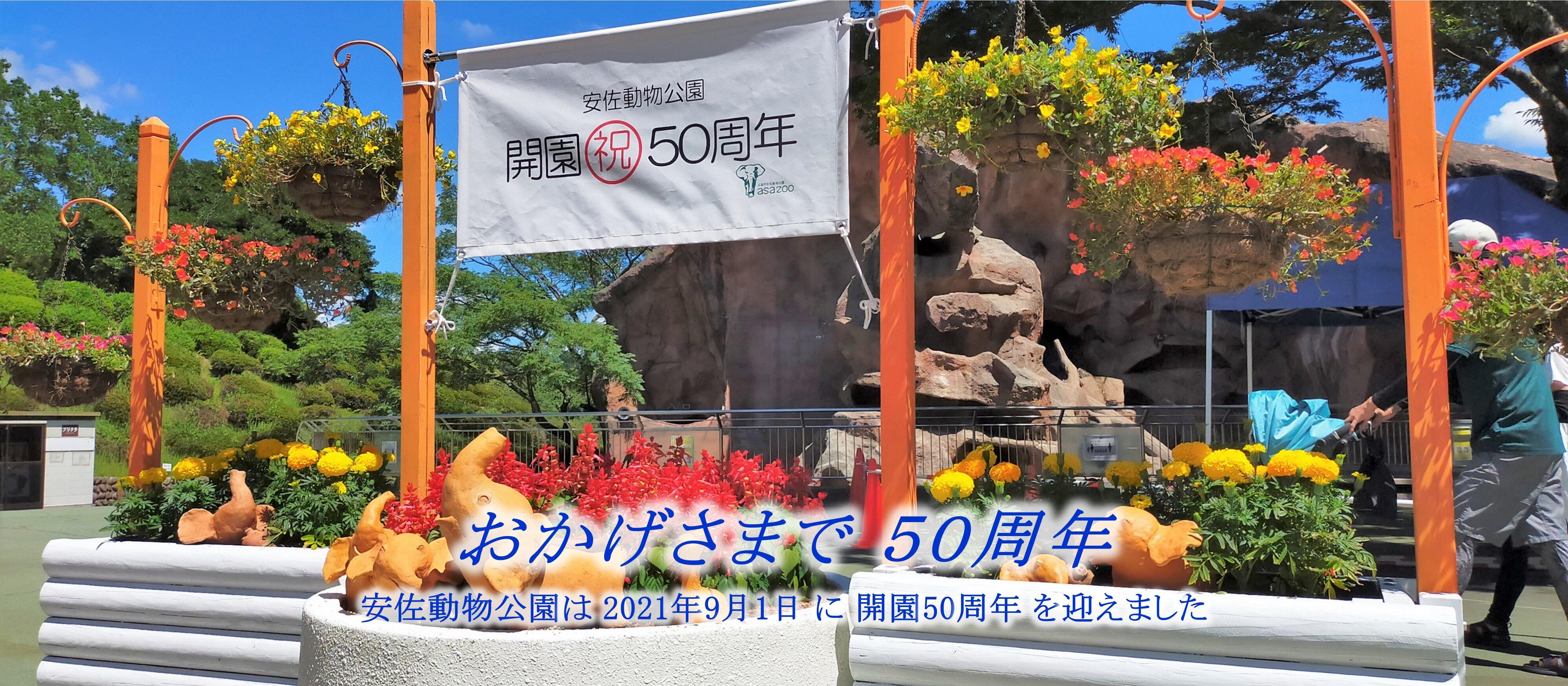 202110_開園再開+50周年08