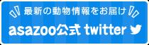 最新の動物情報をお届け!asazoo公式twitter